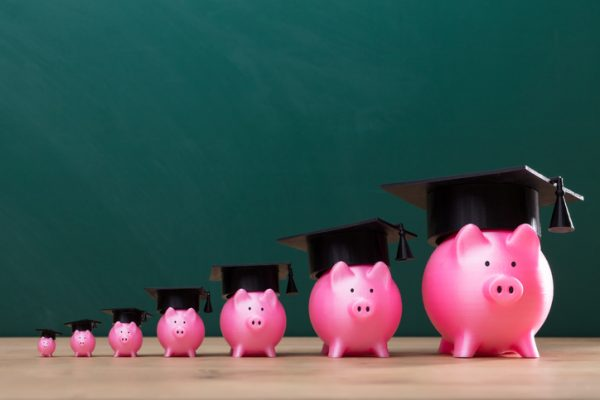 What Effect Does Education Level Have on Wealth?